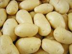 mesin-pengupas-kentang-dan-ubi maksindomedan